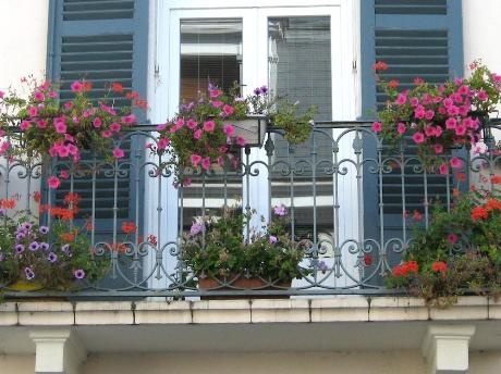 Ideas para decorar el balc n con plantas for Plantas para balcones